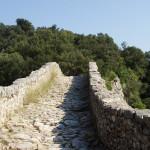 Catalan-path
